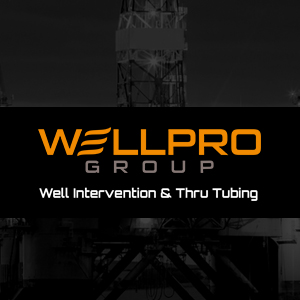 WellPro Group